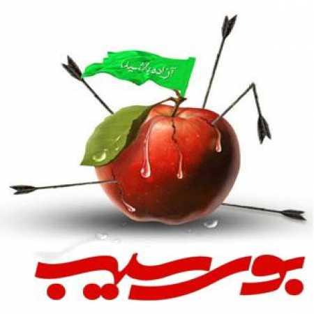 دانلود مداحی محمدحسین حدادیان بوی سیب و حرم حبیب
