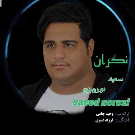 سعید نوروزی نگران